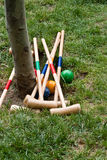 Cricket Royalty Free Stock Photo