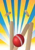 Cricket Stock Photos