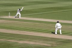 Cricket action Royalty Free Stock Images