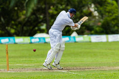 Cricket Action Sport Royalty Free Stock Image