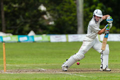 Cricket Action Sport Stock Photography
