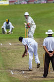 Cricket Action Sport. Bowler bowling fast ball,cricket game action with batsmen and bowlers  between Westville plays Durban Boys High 1st Teams school derby Royalty Free Stock Image