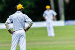Cricket Action Sport. Fielder players watch batsman and ball,cricket game action with batsmen and bowlers between Westville plays Durban Boys High 1st Teams stock images