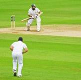 Cricket all'ovale Fotografie Stock Libere da Diritti