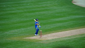 The 2015 Cricket All-Stars Match in New York Royalty Free Stock Images