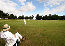 cricket anglików Fotografia Stock