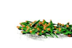 cricket armii Obrazy Stock