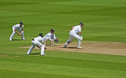 Cricket At The Oval Royalty Free Stock Photos