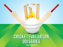 Cricket background with fire ball Royalty Free Stock Photo