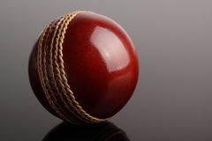 Cricket ball. Stock Photo