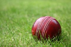 Cricket Ball. A red leather cricket ball in the grass stock photos