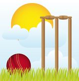 Cricket ball Stock Photos