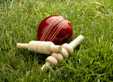 Free Cricket Ball Stock Images - 46668864
