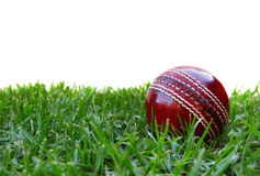 Cricket Ball. On grass, with white background.  Traditional red leather Stock Photo