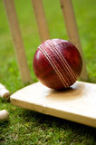 Cricket ball bat & stumps. Red leather cricket ball on grass with stumps royalty free stock photo