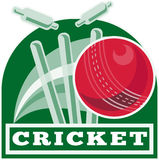 Cricket ball bowling cricket Stock Image