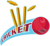 Cricket ball bowling cricket Stock Photography