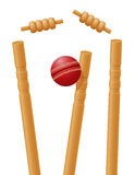 Cricket ball caught in the wicket vector illustration. On white background stock illustration