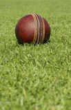Cricket Ball with copy space below. Close up of a leather cricket ball Royalty Free Stock Photography