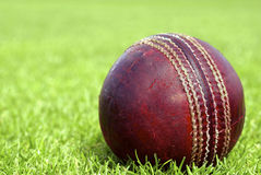 Cricket Ball with copy space to the left. Close up of a used cricket ball on close cut grass Royalty Free Stock Image