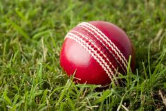 Cricket ball on grass Royalty Free Stock Photo