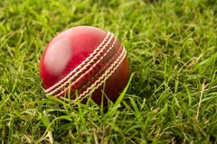 Cricket ball on grass Stock Photo