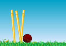 Cricket Ball In The Grass 2b. A cricket ball rolling in the grass next to some cricket stumps Royalty Free Stock Images