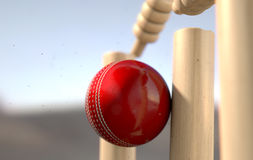 Cricket Ball Hitting Wickets Stock Photography