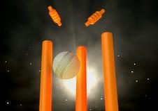 Cricket Ball Hitting Wickets Royalty Free Stock Photos
