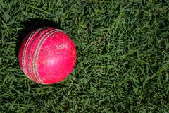 Cricket ball isolated on a green grass with copy space. Cricket ball isolated green grass copy space world worldcup  cricketworld2019  game asia play wales stock images