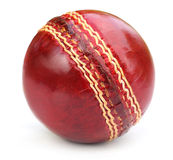 Cricket ball. Over white background stock photography