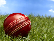 Cricket Ball Royalty Free Stock Photography