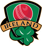 Cricket ball shamrock shield Ireland Stock Photo
