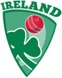 Cricket ball shamrock shield Ireland Stock Photography