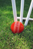 Cricket Ball and Stumps Stock Photography