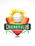 Cricket banner background with flame. Vector illustration Stock Photos