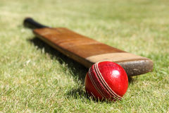 Cricket bat and ball. Cricket ball and bat on green grass of cricket pitch Stock Photos