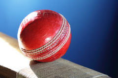 Cricket bat and ball Royalty Free Stock Photography