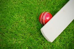 Cricket bat and ball. On green grass pitch with copy space royalty free stock photos