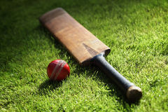 Cricket bat and ball. On green grass of cricket pitch