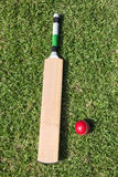 Cricket bat and ball on green grass Royalty Free Stock Photo