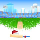 Cricket bat and ball. Vector illustration of cricket bat and ball in stadium vector illustration