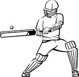 Cricket Bat Swing Royalty Free Stock Image