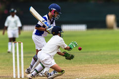 Cricket Bat Wicketkeeper Ball Royalty Free Stock Images