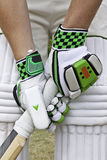 Cricket batsman Royalty Free Stock Image