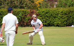 Cricket batsman in action. A Cricket batsman crouched about to strike the ball. Close up stock photography