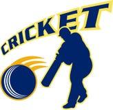 Cricket batsman batting Stock Photography