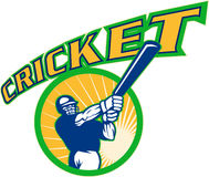 Cricket batsman batting Stock Image
