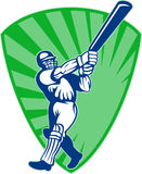 Cricket batsman batting Royalty Free Stock Photos