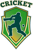 Cricket batsman batting shiel;d Royalty Free Stock Images